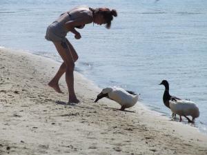 Preying ducks!