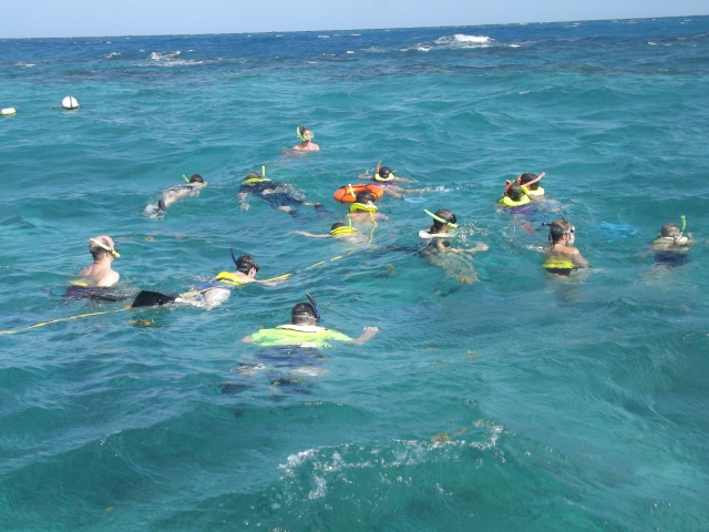 Snorkeling at Buck Island!